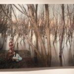 """Фотобиеннале """"Мода и стиль в фотографии- 2015""""  на Гоголевском, 10"""