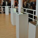 скульптурные объекты Ольги Победовой (оптическое стекло)