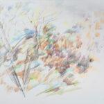 Опала листва. Весь мир одноцветен. Лишь ветер гудит. Мацуо Басе