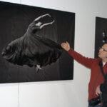 """«Мода и стиль в фотографии -2015″ """"Светлана Захарова. Стоп-кадр"""""""